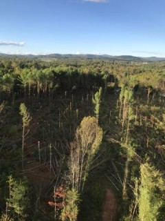 Aerial view of damaged location in Blue Ridge Energy service area